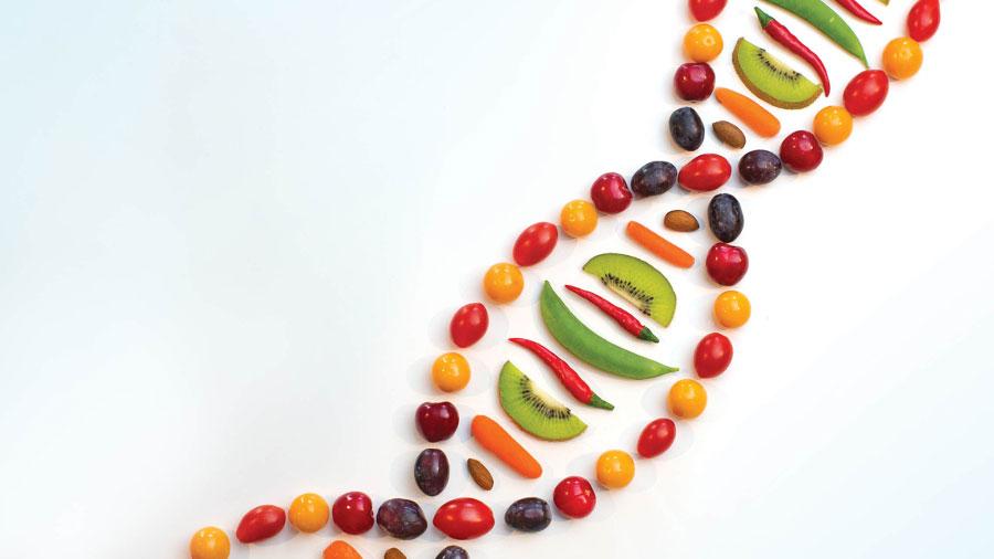 invecchiamento cellulare dna sono influenzati dal cibo